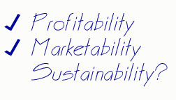 Business Decision Making Criteria: Profitability, Marketability, Sustainability?